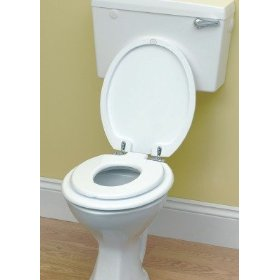 Pottyseat